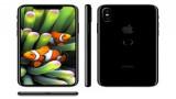 Phân Biệt iPhone 8 Xách Tay 32GB - iPhone 8 Chính Hãng 32GB