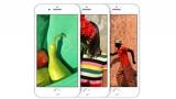 Có nên mua iPhone 8 256 Gb vào thời điểm này?