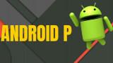 Android P khi nào ra mắt?