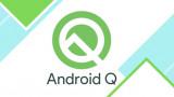 Xiaomi Mi 9 và Redmi K20 Pro được nâng cấp thẳng lên Android Q Beta 6