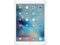 iPad Pro 12 inch Wifi