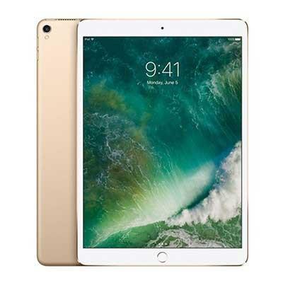 iPad Pro 10.5 Wifi + Cellular Hang My hinh mau vang