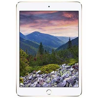 iPad Air 2 Wifi Cellular