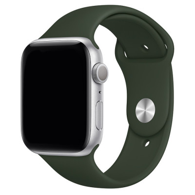 day deo apple watch mau xanh